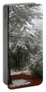 Carolina Snowfall Portable Battery Charger