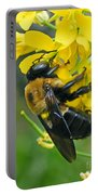 Carpenter Bee Portable Battery Charger