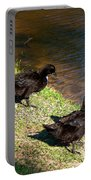 Carpenters Park-ducks Portable Battery Charger