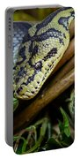 Carpet Python  Portable Battery Charger