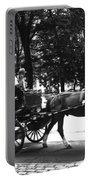 Carriage Ride Nyc Portable Battery Charger