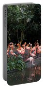 Cartoon - Flamingos In Their Exhibit Along With A Small Lake In The Jurong Bird Park Portable Battery Charger