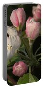 Cascade Of Apple Blossoms Portable Battery Charger