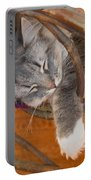 Cat Asleep In A Wooden Rocking Chair Portable Battery Charger