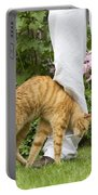 Cat Brushing Against Legs Portable Battery Charger