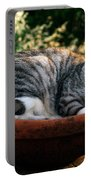 Cat In A Flowerpot Portable Battery Charger