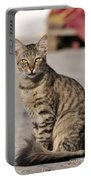 Cat In Aegina Island Portable Battery Charger