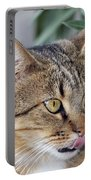 Cat In Athens Portable Battery Charger