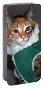 Cat In Patrick's Coat Portable Battery Charger