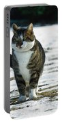 Cat In The Snow Portable Battery Charger