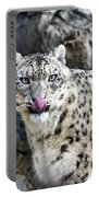 Cat Lick Portable Battery Charger
