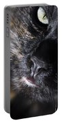 Cat Looking Up Portable Battery Charger