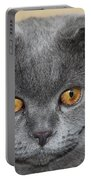 Cat Martin Portable Battery Charger
