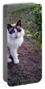 Cat 'n Orange Tree Portable Battery Charger