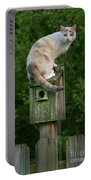 Cat Perched On A Bird House Portable Battery Charger