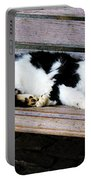 Cat Sleeping On Bench Portable Battery Charger