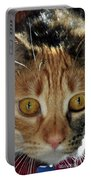 Cat Stare Down Portable Battery Charger