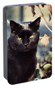 Cat Stevens Portable Battery Charger