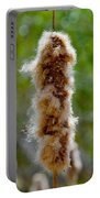 Cat Tail Fuzz Portable Battery Charger