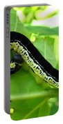 Catalapa Sphinx Caterpillar Portable Battery Charger