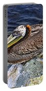 Catalina Pelican Portable Battery Charger