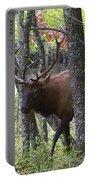 Cataloochee Bull Elk Portable Battery Charger