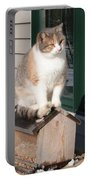 Catfeeder Portable Battery Charger