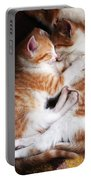 Cats Portable Battery Charger