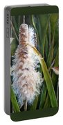 Cattails And Wrens Portable Battery Charger