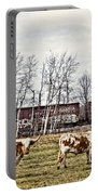 Cattle Train Portable Battery Charger