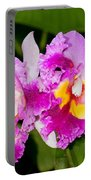 Cattleya Portable Battery Charger