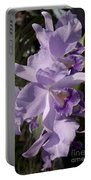 Cattlianthe Portia  'waldor' Portable Battery Charger
