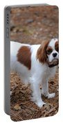 Cavalier Dog Portable Battery Charger