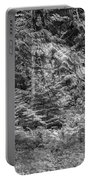 Cedar Along The Trail Of Cedars Glacier National Park Bw Portable Battery Charger