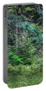 Cedar Along The Trail Of Cedars Glacier National Park Painted Portable Battery Charger