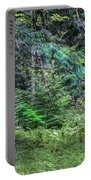 Cedar Along The Trail Of Cedars Glacier National Park  Portable Battery Charger