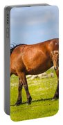 Cedar Island Wild Mustangs 45 Portable Battery Charger