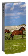 Cedar Island Wild Mustangs 51 Portable Battery Charger