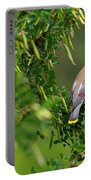 Cedar Waxwing 3 Portable Battery Charger