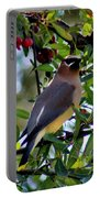 Cedar Waxwing In Tree 030515a Portable Battery Charger