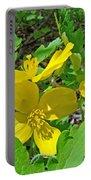 Celandine Poppy Or Wood Poppy - Stylophorum Diphyllum Portable Battery Charger