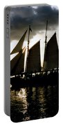 Celebrating Sunset Photograph Portable Battery Charger