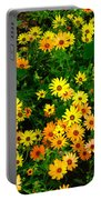 Celebration Of Yellows And Oranges Study 3 Portable Battery Charger