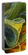 Celebration Sunflower Portable Battery Charger
