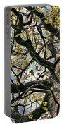 Cemetery Oak Portable Battery Charger
