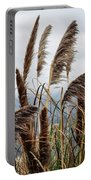 Central Coast Pampas Grass Portable Battery Charger