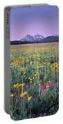 Central Idaho Color Portable Battery Charger