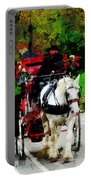 Central Park Carriage Portable Battery Charger