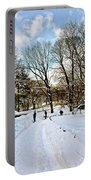 Central Park Snow Storm One Day Later2 Portable Battery Charger