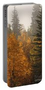 Central Park Yukon Portable Battery Charger
